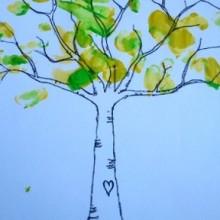 paluszkowe drzewo